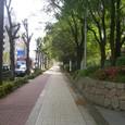 130 上福島北公園